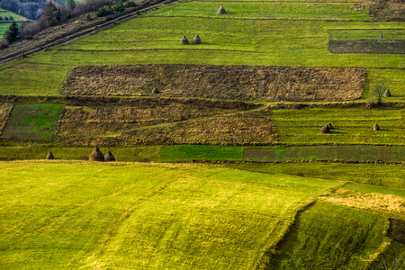green agricultural field with haystack on hillside in mountains in morning light Stock Photo