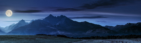 panorama of Tatra mountains in haze behind the forest and rural field at night in full moon light Stok Fotoğraf - 66099026