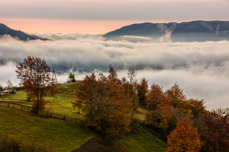red hot sunrise with cold morning fog in rural valley with high mountains. green grass and trees with colorful foliage on the hillside meadow