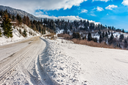 winter mountain landscape. winding road that leads into the spruce forest covered with snow on fresh frosty day