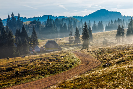 road through the valley in rural area near the foggy forest in mountains at hot sunrise