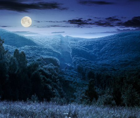 mountain summer landscape. trees near meadow and forest on hillside under  sky with clouds at night in full moon light Stock Photo