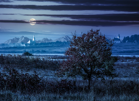 lonely red tree in the autumn rural field near the village with two churches in foggy night under full moon light
