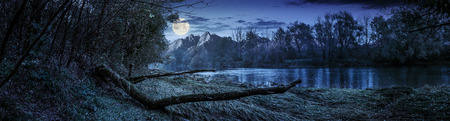 Composite landscape with river and falen tree on the shore in the forest in High Tatra Mountains at night in full moon light Stock Photo