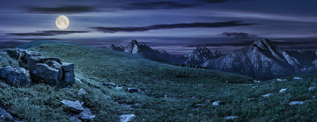 Hight Tatra mountain summer landscape. meadow with huge stones among the grass on top of the hillside near the peak of mountain range at night in full moon light