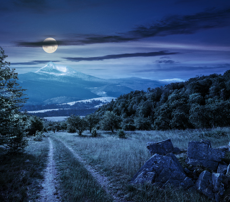 Winter meets spring composite landscape. Valley with trees and boulders on a grass. Road through meadow goes to forest in mountains with snowy peak under cloudy sky at night in full moon light