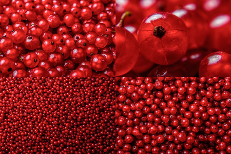 image set of red currant texture in different sizes Stock Photo