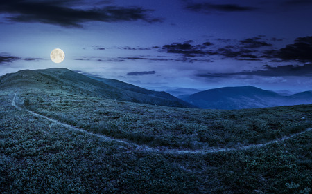 path through a large meadow on the hillside in high mountains at night in full moon light