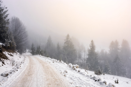 winter mountain landscape. road that leads into the spruce forest covered with snow on a foggy day Stock Photo
