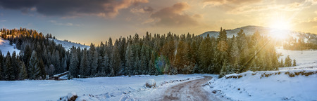 panoramic mountain landscape in winter. winding road that leads into the spruce forest on a snowy meadow in evening light Stock Photo