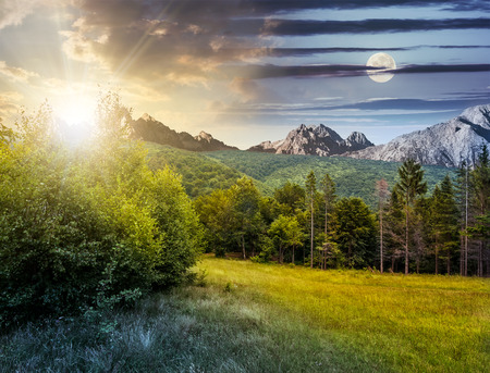 Day and night time composite image with spruce forest on a meadow  in Tatra mountains Stock Photo