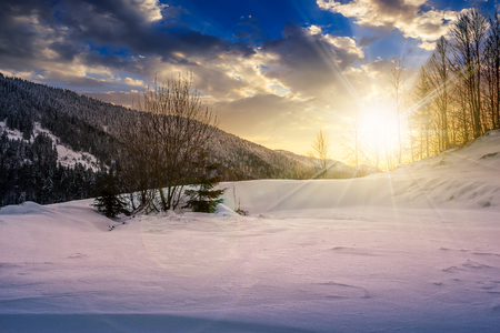forest on a meadow full of snow in high mountains with snowy tops in evening light Stock Photo