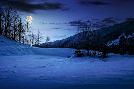 forest on a meadow full of snow in high mountains with snowy tops at night in full moon light