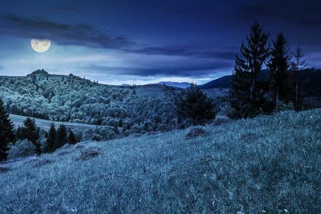 満月の光で夜の草原のトウヒ林の山の範囲の斜面