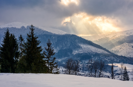 stormy winter sky over rural area in mountains near spruce forest Stock Photo