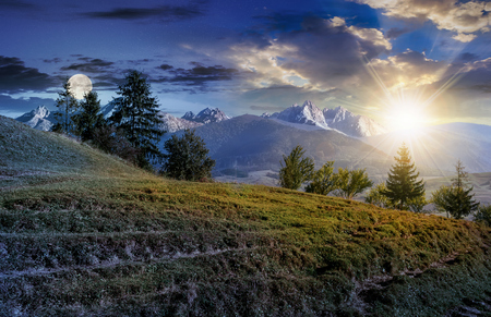 tensed: Composite summer landscape with spruce forest on grassy hillside in High Tatra Mountains
