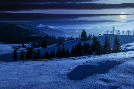 spruce forest on a meadow full of snow in mountains at night in full moon light Stock Photo