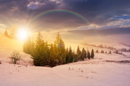 stormy winter sky over rural area in mountains near spruce forest under the rainbow in evening light Stock Photo