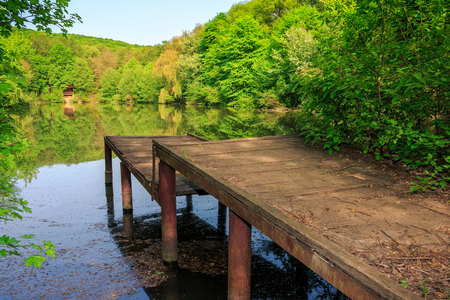 wooden piere on the lake with reflections among forest on summer morning Stock Photo - 71019024