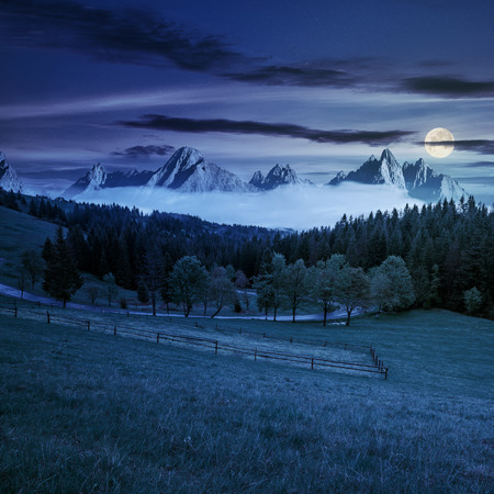 composite summer mountain landscape. rural valley with fence on a  grassy meadow. curve road goes to the spruce forest in front of a huge ridge with rocky peaks at night in full moon light