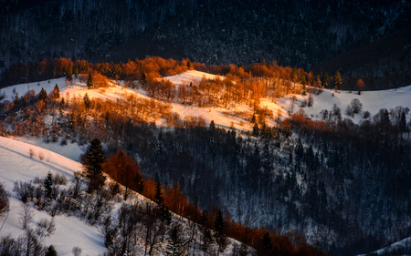 mountain hills with forest in magenta light of winter sunrise Stock Photo
