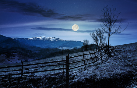 Spring time rural landscape. Wooden fence along the path through agricultural fields in Carpathian mountains at night in full moon light Stock Photo