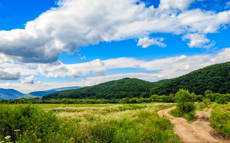 countryside landscape: Beautiful countryside landscape.