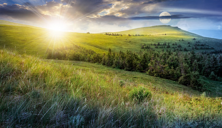 day and night time change. high mountain idyllic landscape. grassy meadow with forest on hillside. epic nature concept. Reklamní fotografie