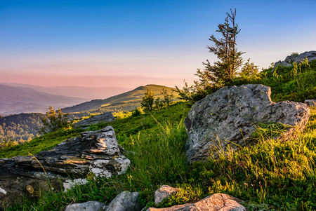 epic sunrise on high mountain ridge. lonely spruce tree among huge rocks on grassy hillside. gorgeous vewpoint with hill and peak in the distance. spectacular landscape with venus belt and clear blue sky in summer time