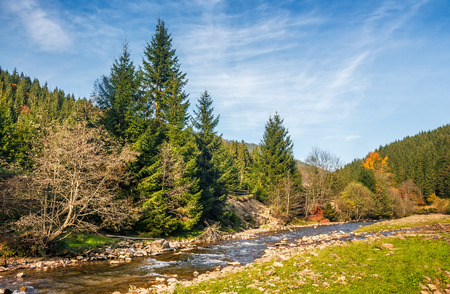 beautiful autumn landscape. rocky shore of the river that flows near the forest at the foot of the mountain. Stock Photo