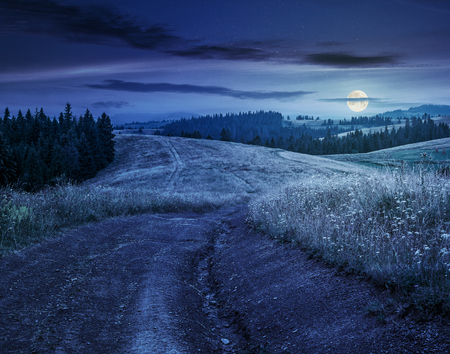 forest in mountain rural area. green agricultural field on a hillside. beautiful summer scenery at night in full moon light Stock Photo
