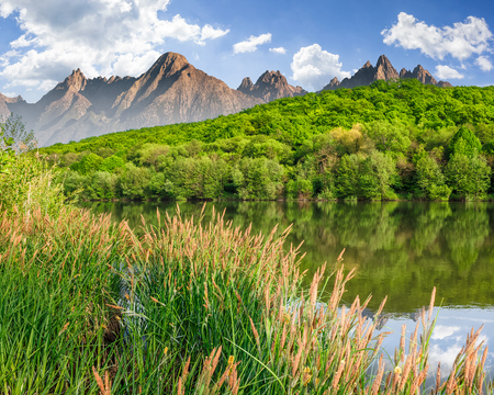 composite summer landscape with trees among tall grass on the shore of a clear lake at the foot of epic high Tatra mountain ridge with rocky peaks under blue sky with clouds Stock Photo - 74556982