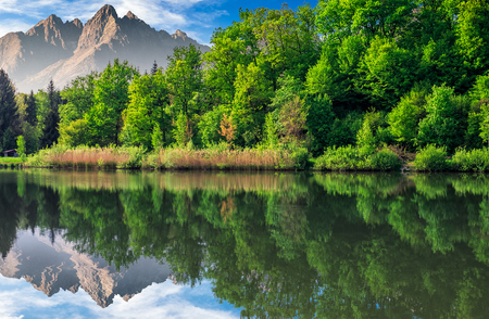composite summer landscape with trees among tall grass on the shore of a clear lake at the foot of epic high Tatra mountain ridge with rocky peaks under blue sky with clouds