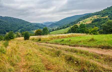 beautiful countryside landscape. path through rural field near the forest on a tranquil summer day. mountain ridge under cloudy blue sky Stock Photo