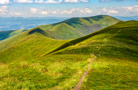 winding path through large meadows on the hillside of Carpathian mountain ridge