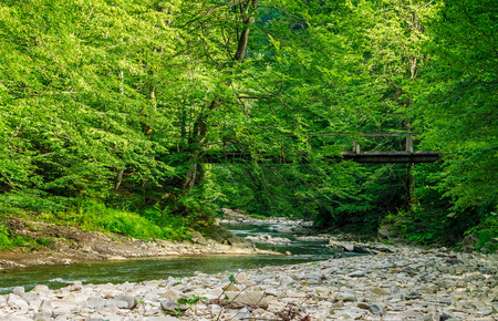 wooden bridge over the winding forest river. rocky shoreline among green trees. wonderful summer nature.