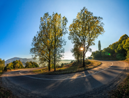 trees on tricky serpentine in mountains. landscape in early autumn sunrise Stock Photo