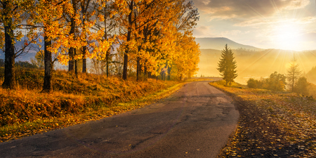 old asphalt road winding through the fog to village in mountains. forest with yellow foliage in morning light at sunrise. beautiful panoramic countryside landscape