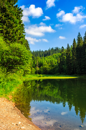 mountain lake among the green fir forest in picturesque summer landscape. reflection in crystal clear water. beautiful weather with blue sky and some clouds at sunrise