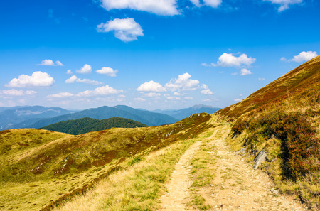 winding path through large meadows on the hillside. Tracking uphill Carpathian mountain ridge. warm and sunny autumn day with cloudy sky.