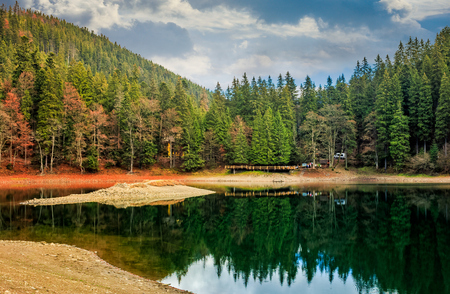 tourist visiting mountain lake among the green fir forest in picturesque summer landscape. beautiful weather with blue sky and some clouds