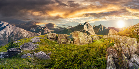 Composite panorama of dandelions among the rocks in High Tatra mountain ridge in the distance. Beautiful landscape on summer sunset with cloudy sky