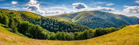 panoramic summer landscape with road through hillside meadow in mountains