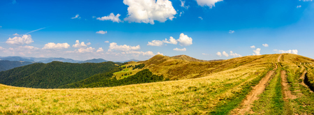 path through the mountain ridge. Carpathian summer landscape. fine weather with blue sky and few clouds.