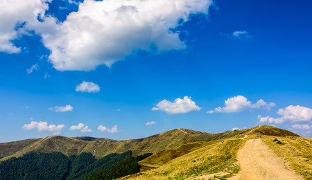 summer mountain landscape. path through the ridge to the top. fine weather with blue sky and few clouds