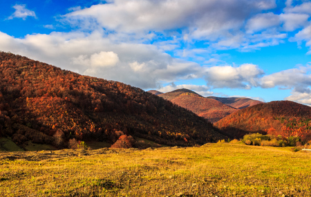 mountain landscape in autumn season. beautiful and vivid countryside with blue sky and clouds.