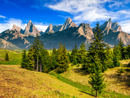 Composite summer landscape with spruce forest on grassy hillside in High Tatra Mountains