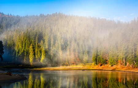 View on crystal clear lake with smoke and reflection on the water. Spruce forest on foggy autumn morning. Majestic mountain landscape at sunrise.