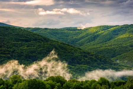 mountain ridge in fog. green forest on hillside in springtime. mysterious weather at sunrise Stock Photo
