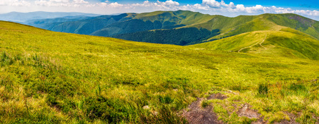 panoramic summer landscape in Carpathians. road through grassy hillside meadow on Borzhava mountain ridge. popular tourist destination. good sunny weather.